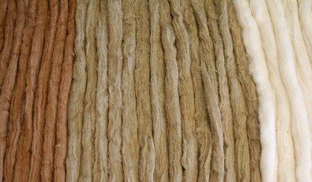 Red emprendeverde: Experiencias de Éxito de Red emprendeverde - Fundación Biodiversidad's: Organic Cotton Colours