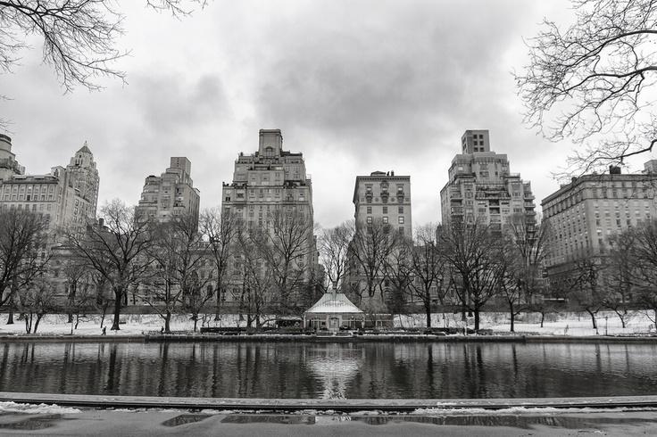Central Park, New York    http://500px.com/evildave    ©Davide Boccardo