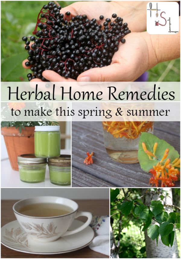 Make these herbal home remedies this spring and summer and be ready for whatever illness or malady comes your way throughout the year. http://homespunseasonalliving.com/herbal-home-remedies-to-make-this-year/