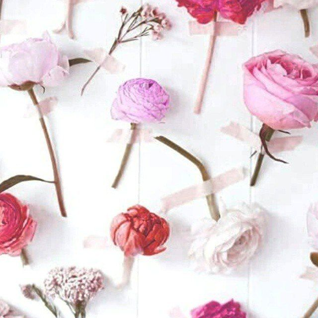 С первым днем весны!  #spring #suitster #online #store #fashion #style #finderskeepers #keepsake #shakuhachi #addison #chalk