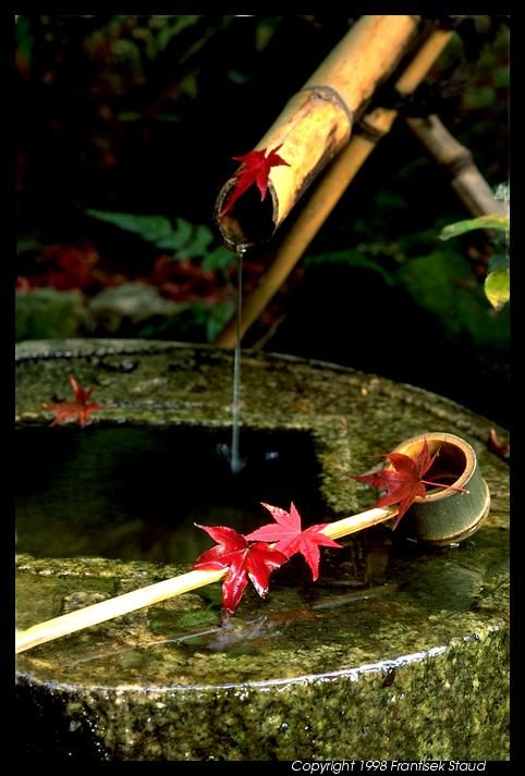 Love the sound this would make! I have some bamboo water features in my garden and love them! Water basin in Ryoan-ji, Kyoto, Japan