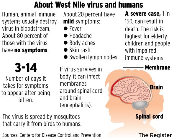 About 80% of the people infected with West Nile Virus will never show any symptoms! However if you notice any symptoms, don't hesitate to seek medical attention!