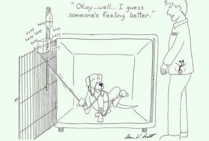World of a vet tech... oh too true  hahahah this is so very very true!!!! I can hear the IV pump now!!!