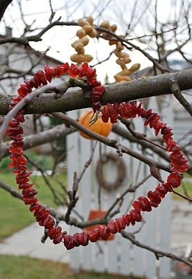 Christmas cranberry hearts for the birds