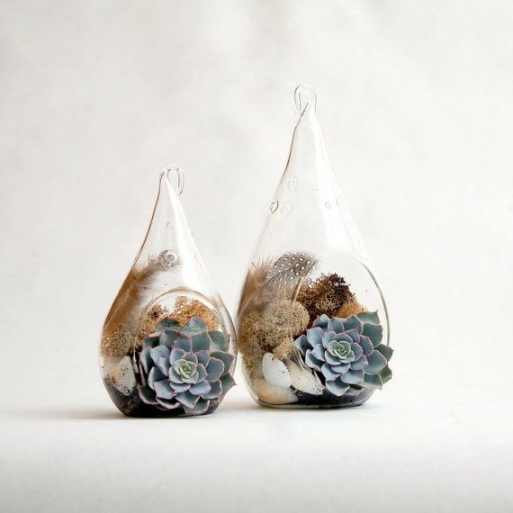Set of 2 Teardrop shaped terrariums by TallPoppyGardens on etsy - These are just SO. COOL. They would look amazing on a bookshelf or mantle!