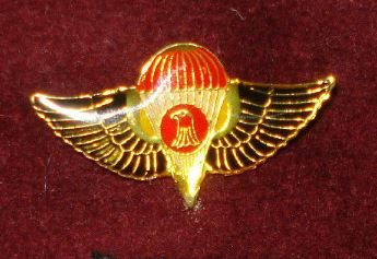 VINTAGE IRAQI SPECIAL FORCES TROOPS (MAROON BERET) WITH PARA BADGE,WASITCompan