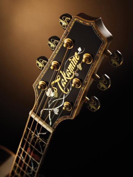 Takamine 50th Anniversary. Great quality guitars that work with you, not against you. So playable and affordable. A working person or musician can actually afford and truly enjoy playing.