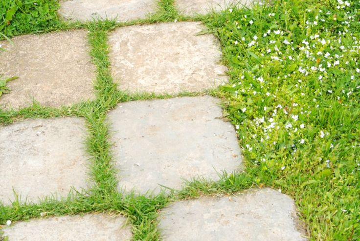 Oltre 25 fantastiche idee su ghiaia da giardino su - Vialetti da giardino ...