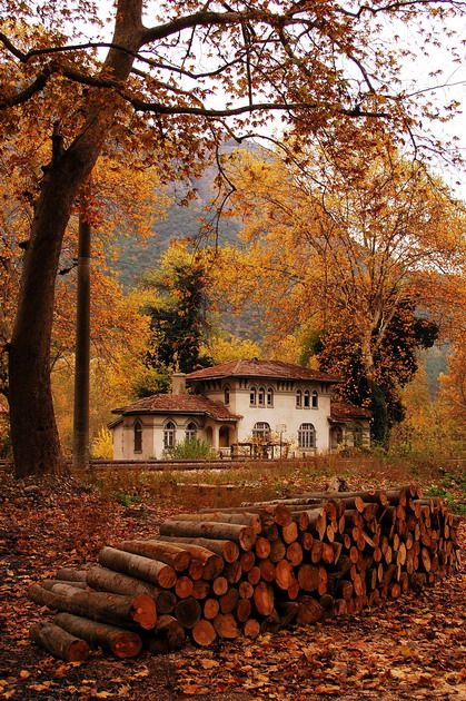 Dogancay railway station - Autumn in Dogancay village, Sakarya http://trekearth.com/