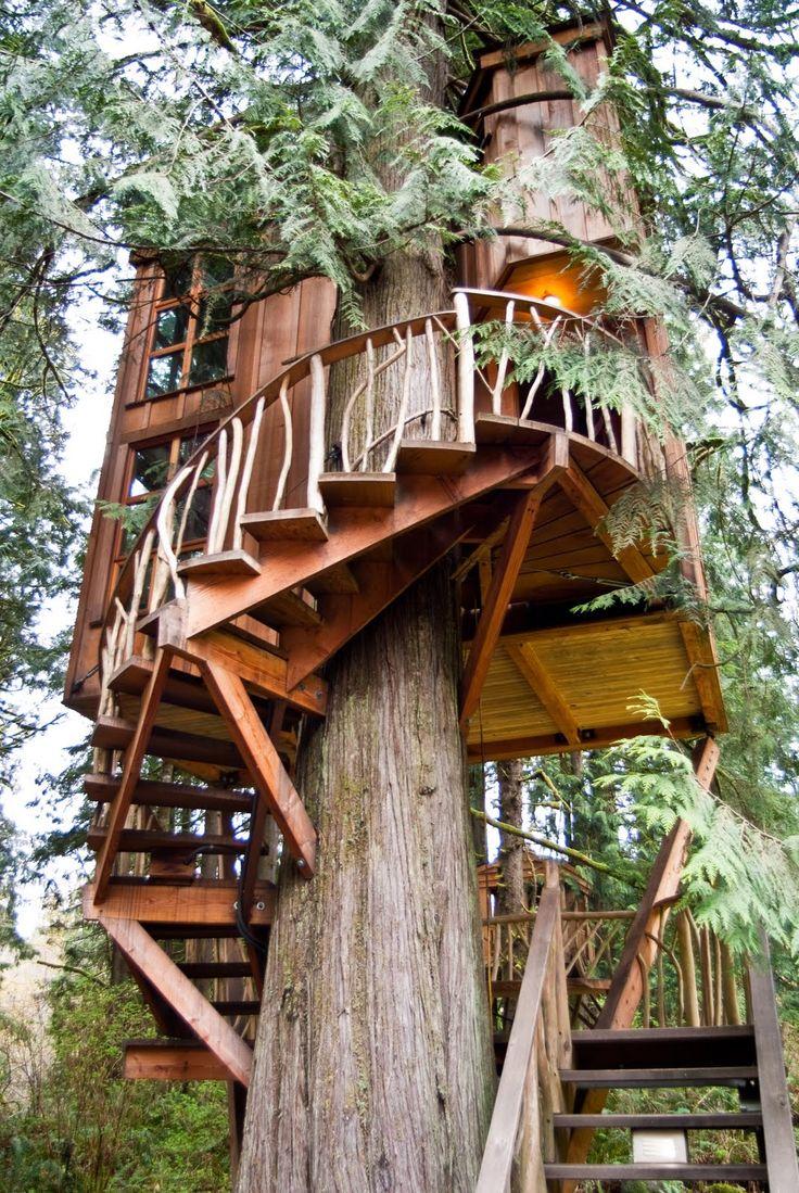 pinteresst.com/fra411 #treehouse - Treehouse point, Fancy Tree houses in Fall City, Washington