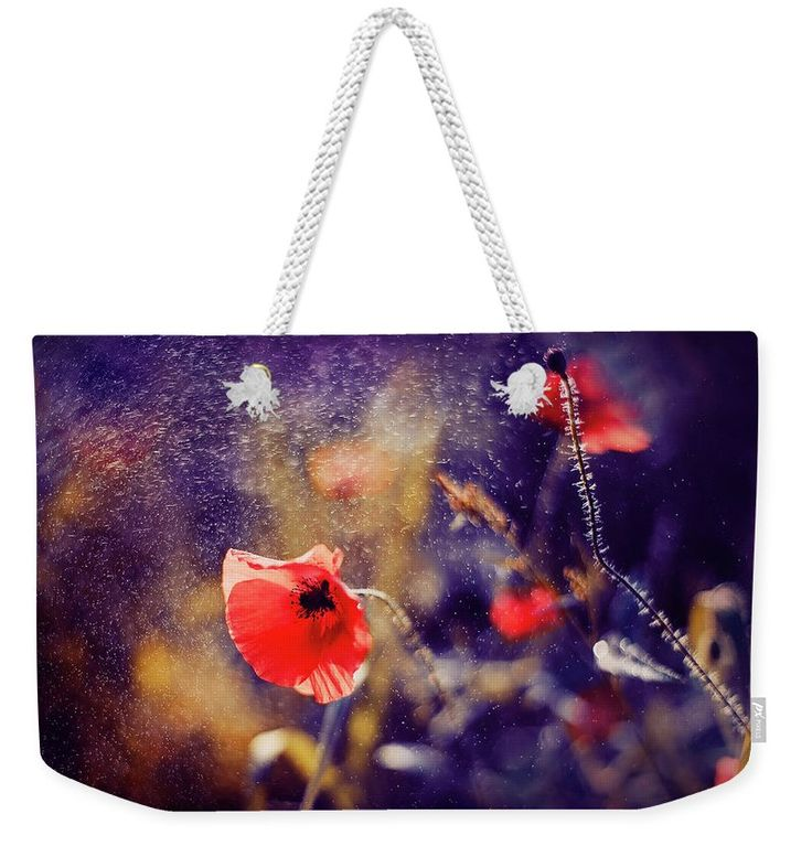Weekender Tote Bag featuring the photograph Red Poppy On Violet by Oksana Ariskina. A red poppy flower in a sparkling bokeh violet sunny abstract background. Available as mugs, posters, greeting cards, phone cases, throw pillows, framed fine art prints, metal, acrylic or canvas prints, shower curtains, duvet covers with my fine art photography online: www.oksana-ariskina.pixels.com #OksanaAriskina