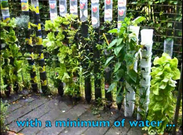 Gardening In Bottle : Bottle Tower For Plants -- What a great way to recycle soda bottles ...