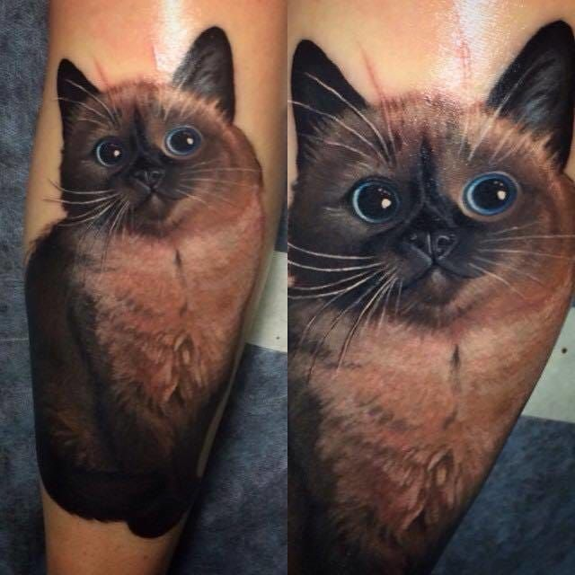 Very Realistic Cat Tattoo With Images Cat Portrait Tattoos Cat Tattoo Designs Cute Cat Tattoo