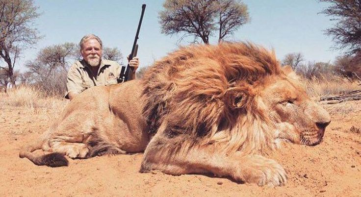 Petition · Nature and Cultural International : Stop Hunting Endangered Animals for Profit !!! · Change.org please sign the petiton. October 10 2016 #banhunting
