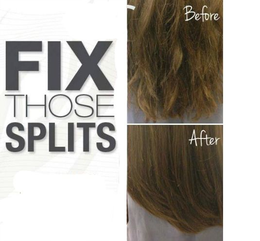 10 Best Homemade Split end treatments