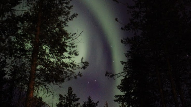We saw a great light show at Easter, Lapland! Northern Lights appeared a few nights. http://puukkopaja.fi/