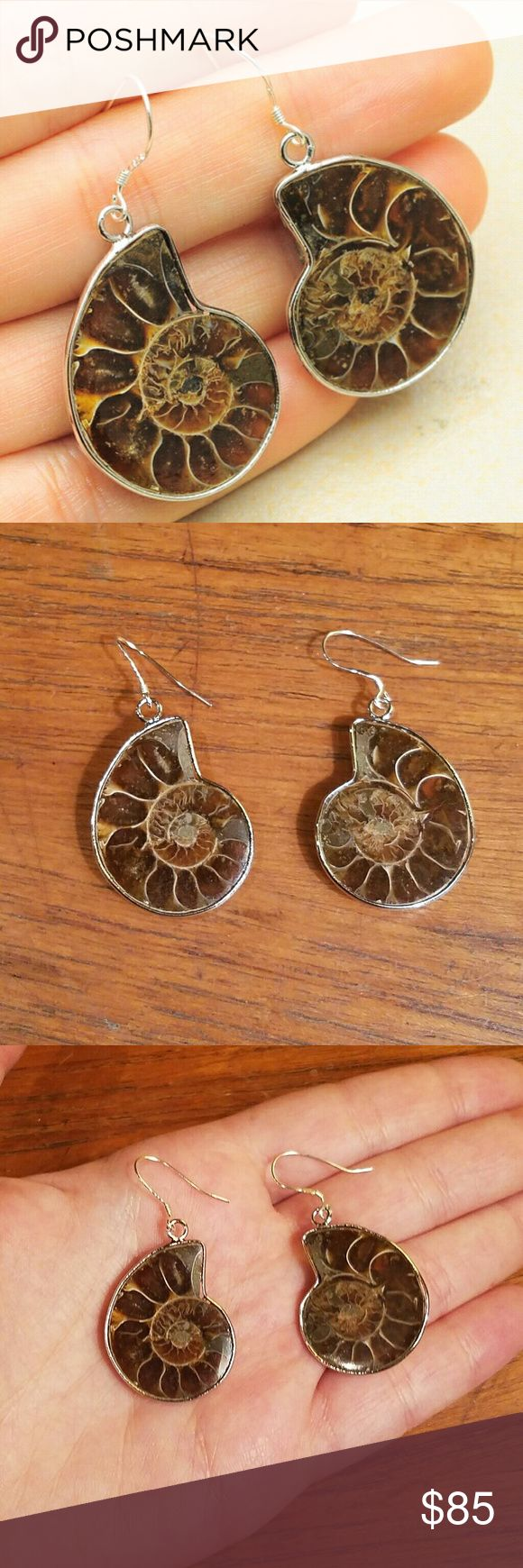 Natural Sterling Ammonite Fossil Earrings So unique and rare. 18k white gold plated settings with sterling silver 925 hooks. Jewelry Earrings