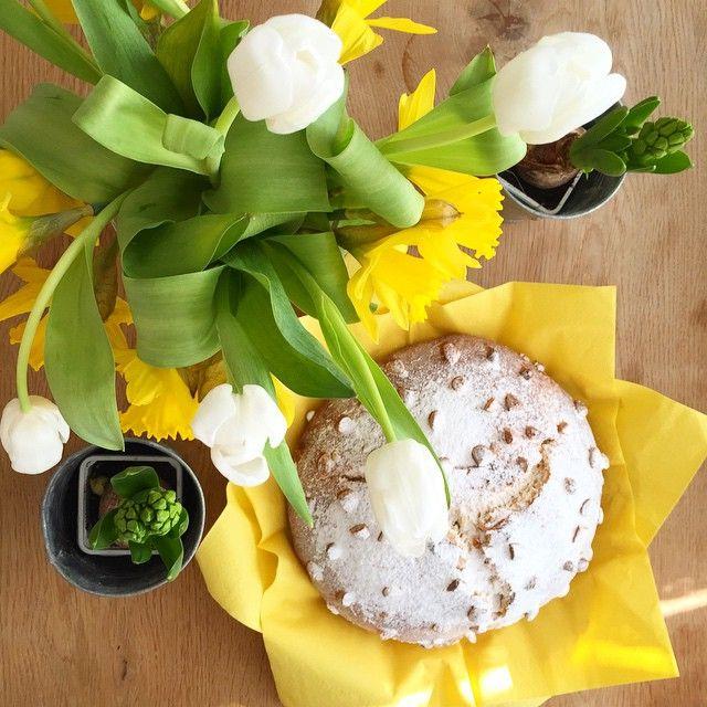 Veselé Velikonoce! Happy Easter! #mazanec #tulipány #narcisy #hyacint #hyacinth  #veselevelikonoce #tulips #happyeaster
