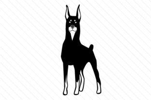 Dog Breed - Doberman pinscher - Creative Fabrica