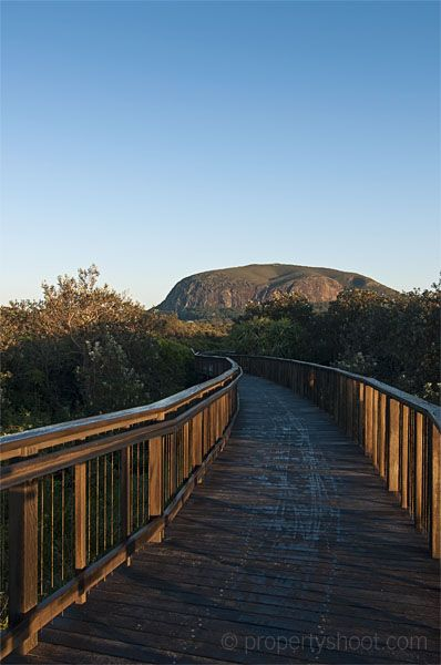 Boardwalk to Mt Coolum, Sunshine Coast Australia