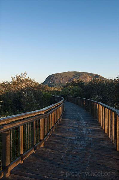 Boardwalk to Mt Coolum, Sunshine Coast Australia