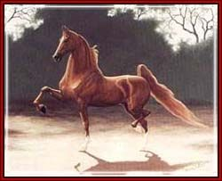 Beautiful, Saddlebreds are unequaled in beauty like works of art.