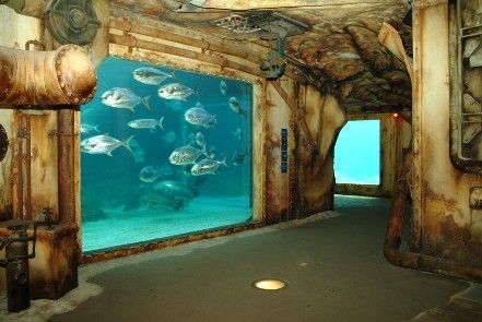 The aquarium is located inside an old ship ...