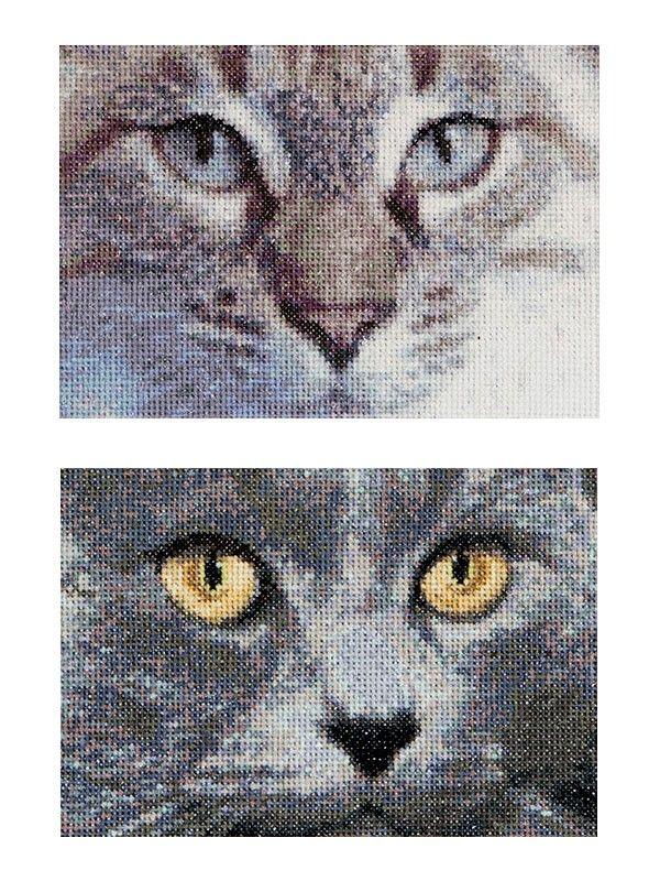 Borduurpakket Katten Jack en Luna - Thea Gouverneur | Borduurpakkettenwinkel