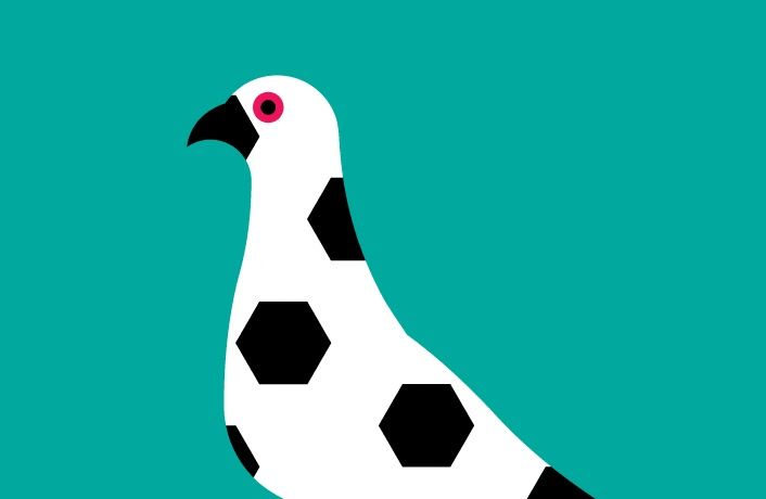 football bird | Art | Pinterest