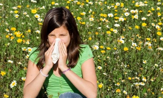 Your Guide To Overcoming Allergies - Summer should warm us all, body and soul, but many of us sniff and sneeze our way into the season. Here are some suggestions for allergy sufferers.