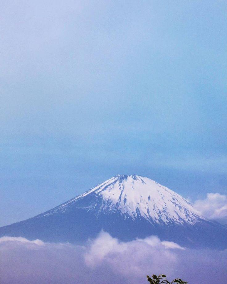 #金時山#山頂#富士山#山歩き#ハイキング#トレッキング#眺望#景観#空#雲#箱根#乙女峠#自然#山#mtfuji #mountainview #summit #topofthemountain #sky #clouds #mountains #mountain #mountainscene #mountainscape #nature #hiking #trekking #view #scenery #landscape