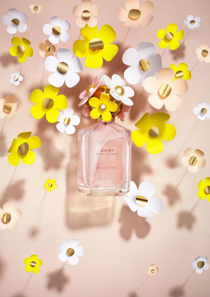 Magnus Cramer | #Daisy #Fragrance #StillLife