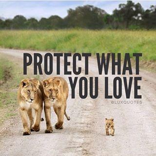 Quotes, Motivation & Love  @luxquotes #familyfirst✨ #l...Instagram photo | Websta (Webstagram)