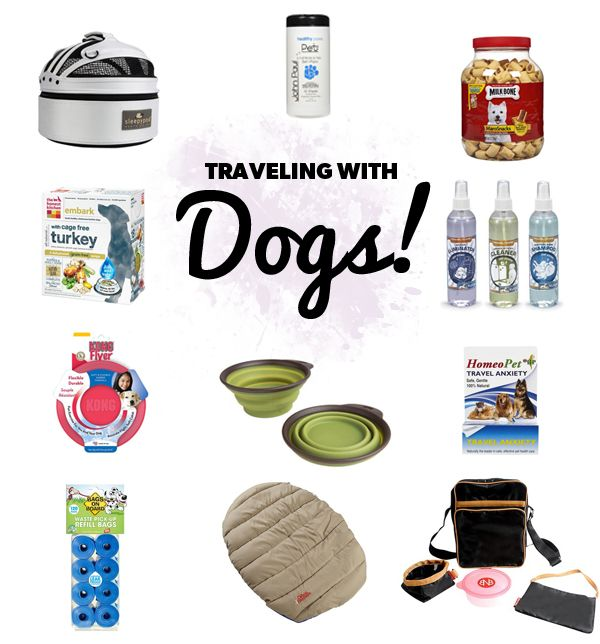 Dramamine For Dogs Flying