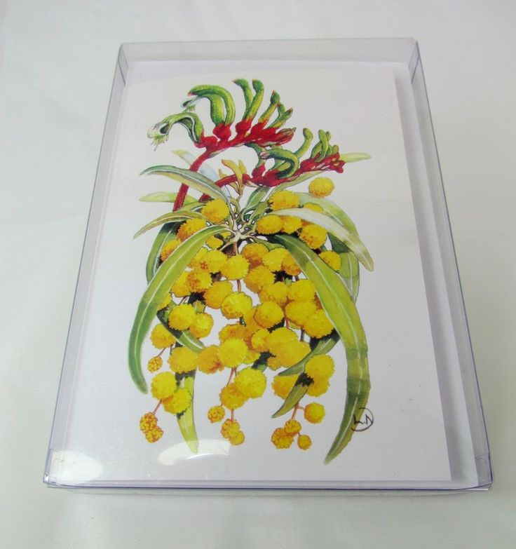 Note Cards set of six boxed Golden Wattle Kangaroo Paw Artwork by Lynn Naismith