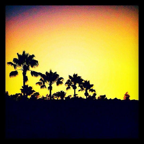 California sunset.  Photo by Melissa Hetu