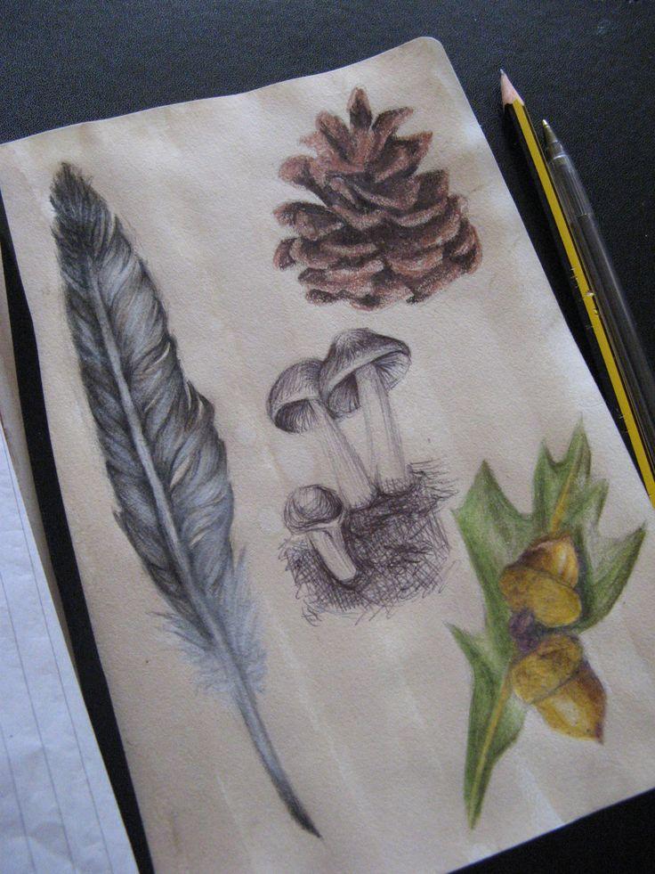 Sketchbook - Natural forms page | Art | Drawing | Illustration |