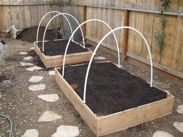 277 Best Images About Gardening On Pinterest Gardens