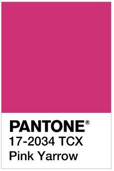 Pantone's Spring 2017 Color Trend Prediction - Pink Yarrow