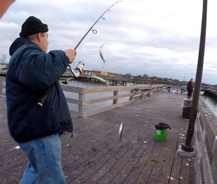 20 best herring fishing images on pinterest fishing for Jones beach fishing pier