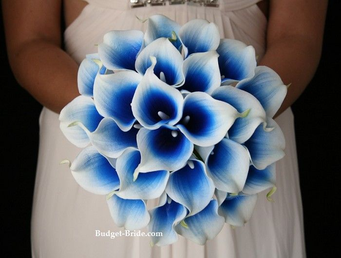 blue and white calla lilies - Totally something Tabbi would like