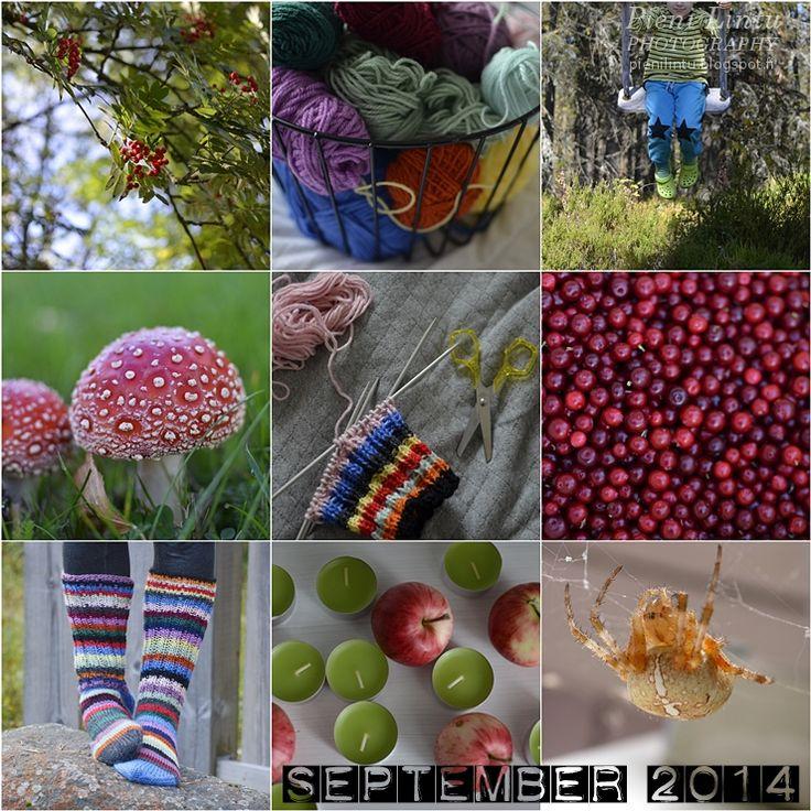 September 2014  http://www.pienilintu.blogspot.fi/2014/10/a-month-in-photos-september.html