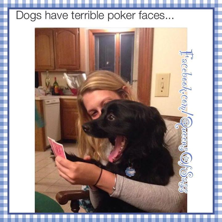 acid poker face memes
