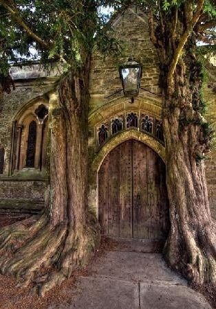 Wooden Door of St Edwards church with two ancient yew trees, Stow-on-the-Wold,