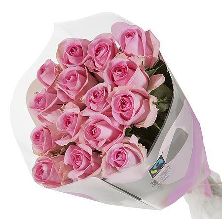 15 Fairtrade rosa sløyfe roser fra Mestergrønn. Om denne nettbutikken: http://nettbutikknytt.no/mestergronn-no/