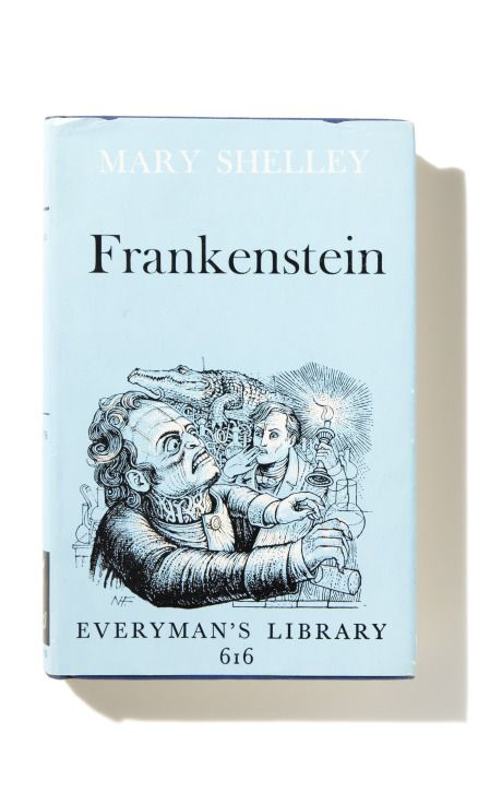mary shelleys frankenstein essay