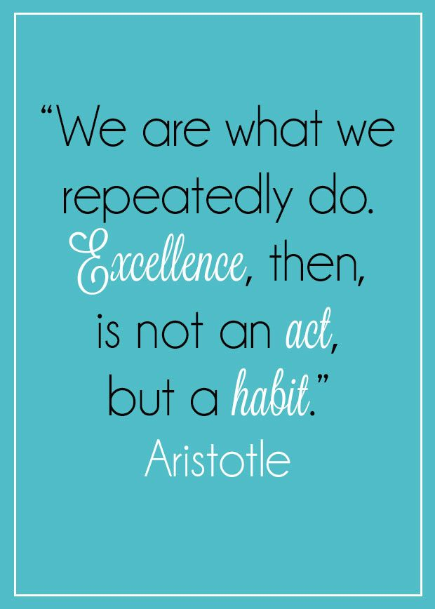 We Are What We Repeatedly Do - Aristotle Quote