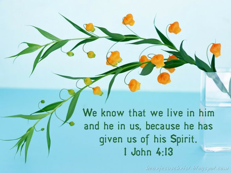 Image result for 1 John 4:13-15