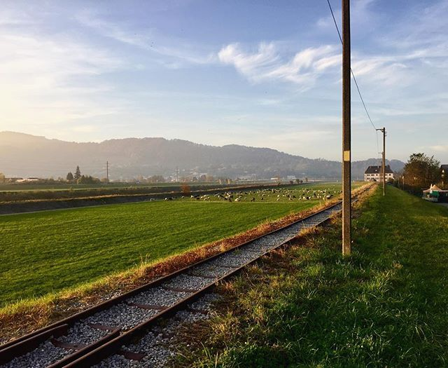 Don't listen to them. Go see for yourself.❤️ I miss these sunsets. 📍Lustenau, Austria 🇦🇹🌞 Blog link is in the bio.  #lustenau #vorarlberg #österreich #austria #europe #europa2016 #natura #naturephotography #throwback #theview #green #traintracks #sunset #farm #animalkingdom #igersaustria #topphotoaustria #happiness #viewslikethis #seeplaces #travel #traveler #writer #travelphotography #travelgram #travelblogger #travelblog…