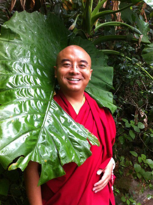 """Play of emptiness ~ Mingyur Rinpoche http://justdharma.com/s/bzphq  All thoughts, perceptions, and physical sensations are, according to buddhism, momentary expressions of the infinite possibility of emptiness.  – Mingyur Rinpoche  from the book """"The Joy of Living: Unlocking the Secret and Science of Happiness"""" ISBN: 978-0307347312…"""